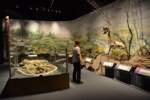 Im Paläontologischen Museum in Trelew