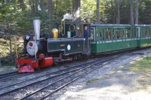 Zug der Ferrocarril Austral Fuegino, der südlichsten Bahnlinie der Welt