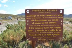 Verhaltensregeln im Parque Nacional Monte Leon