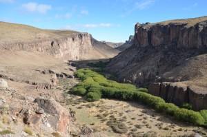 Schlucht des Rio Pinturas oberhalb der Cueva de las Manos