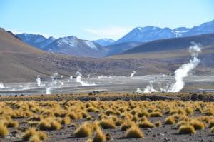 Geysirfeld El Tatio, 4.300 m hoch, in den mittleren Vormittagsstunden