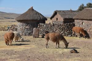 Gehöft auf dem Altiplano