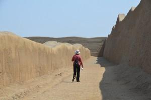 Die Mauern in Chan Chan waren bis zu 10 m hoch.