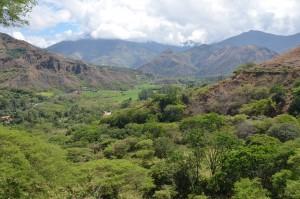 Üppig grünes Tal bei Vilcabamba