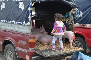 Abenteuer-Spielplatz auf dem Viehmarkt in Saquisilí