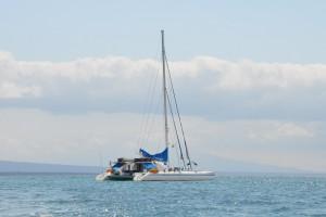 Der Segel-Katamaran Nemo I