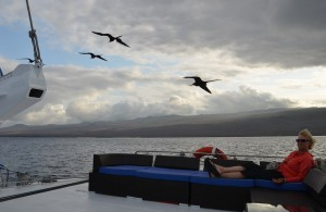 Abendstimmung mit Fregattvögeln