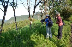 Auf Vogelbeobachtungstour in Mindo