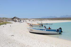 Sandstrand auf der Isla Coronado