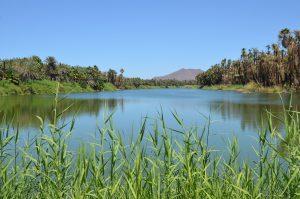 Sieht nach Mandara-Seen in Libyen aus, ist aber San Ignacio auf der Baja California.
