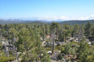 Blick vom Torre de Piedra