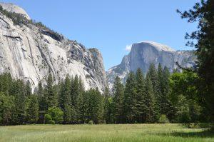 Im Yosemite Valley, Blickrichtung ins Tal hinein. Im Hintergrund Half Dome