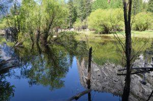 Spiegelungen im mit Recht so benannten Mirror Lake