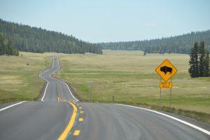 """Nicht ernst genommenes Schild """"Bisons next 5 miles"""""""