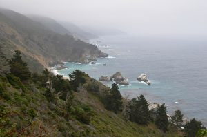 Die Küste am Highway California 1 im Nebel