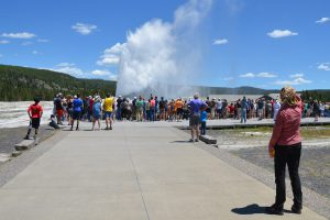 Old Faithful, im Upper Geyser Basin, Yellowstone National Park