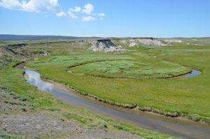 Hayden Valley, im Hintergrund eine nur zu erahnende Bison-Herde