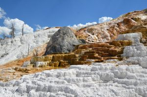 Sinterterrassen von Mammoth Hot Springs (2)