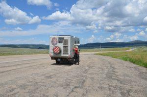 Kurzer Halt an der US89 in Montana