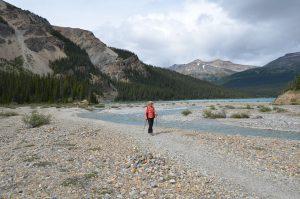 Wanderung am Bow Lake (1)