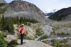 Wanderung am Bow Lake (2)