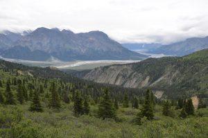 Blick vom Sheep Mountain in das Tal des Slim Rivers. Im Hintergrund die Gletscherzunge des Kaskawulsh Glaciers