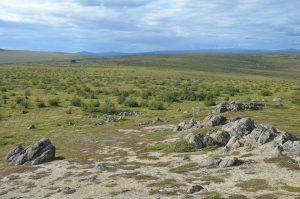 Tundra in der Nähe des Polarkreises