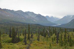 Die Chugach Mountains vom Glenn Highway aus gesehen