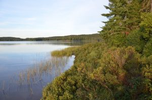Canisbay Lake im Algonquin Provincial Park in Ontario