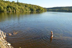 Badefreuden im Rivière Gatineau