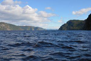 Im Zodiac auf dem Fjord-du-Saguenay unterwegs (1)