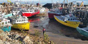 Hafen von Alma an der Bay of Fundy bei Niedrigwasser